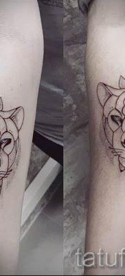 фото тату львица для статьи про значение татуировки львица – tatufoto.ru – 20