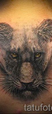 фото тату львица для статьи про значение татуировки львица – tatufoto.ru – 26