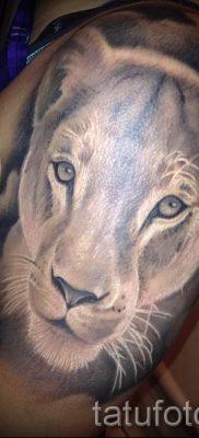 фото тату львица для статьи про значение татуировки львица – tatufoto.ru – 31