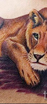 фото тату львица для статьи про значение татуировки львица – tatufoto.ru – 34