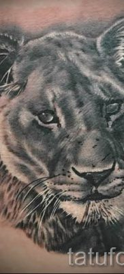 фото тату львица для статьи про значение татуировки львица – tatufoto.ru – 38