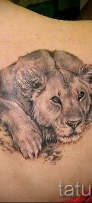 фото тату львица для статьи про значение татуировки львица – tatufoto.ru – 43