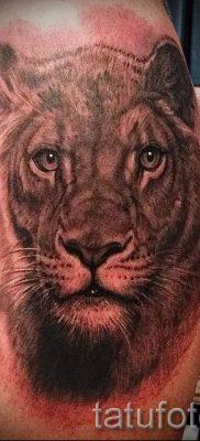 фото тату львица для статьи про значение татуировки львица – tatufoto.ru – 48