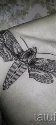 фото тату мотылек для статьи про значение татуировки мотылек – tatufoto.ru – 6