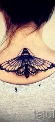 фото тату мотылек для статьи про значение татуировки мотылек – tatufoto.ru – 10