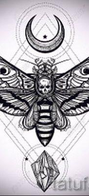 фото тату мотылек для статьи про значение татуировки мотылек – tatufoto.ru – 11