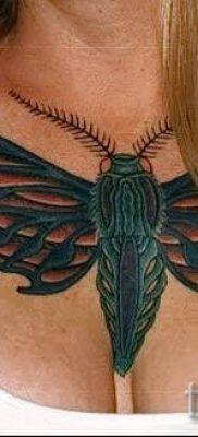 фото тату мотылек для статьи про значение татуировки мотылек – tatufoto.ru – 20