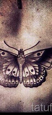 фото тату мотылек для статьи про значение татуировки мотылек – tatufoto.ru – 26