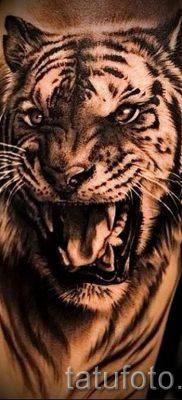 фото тату оскал тигра для статьи про значение татуировки с оскалом – tatufoto.ru – 21
