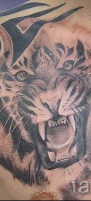 фото тату оскал тигра для статьи про значение татуировки с оскалом – tatufoto.ru – 22