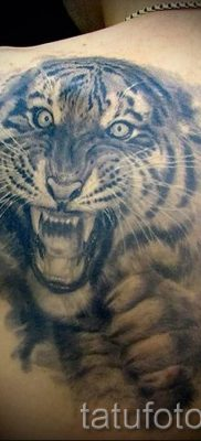 фото тату оскал тигра для статьи про значение татуировки с оскалом – tatufoto.ru – 28