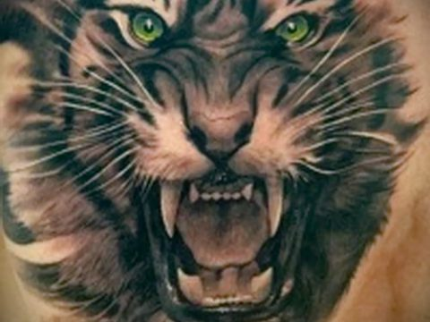 фото тату оскал тигра для статьи про значение татуировки с оскалом - tatufoto.ru - 29