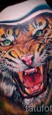 фото тату оскал тигра для статьи про значение татуировки с оскалом – tatufoto.ru – 32