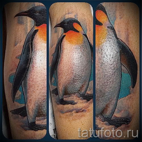 фото тату пингвин для статьи про значение татуировки пингвин - tatufoto.ru - 36