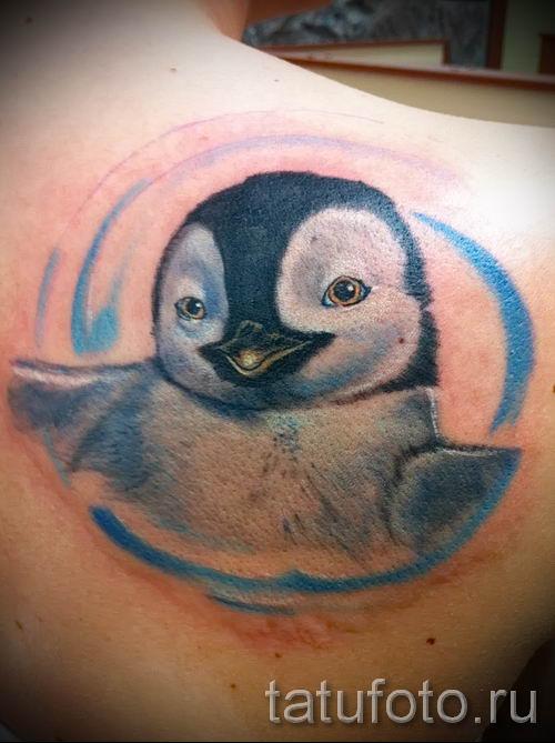 фото тату пингвин для статьи про значение татуировки пингвин - tatufoto.ru - 56