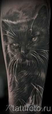 фото тату с черной кошкой для статьи про значение татуировки – tatufoto.ru – 8