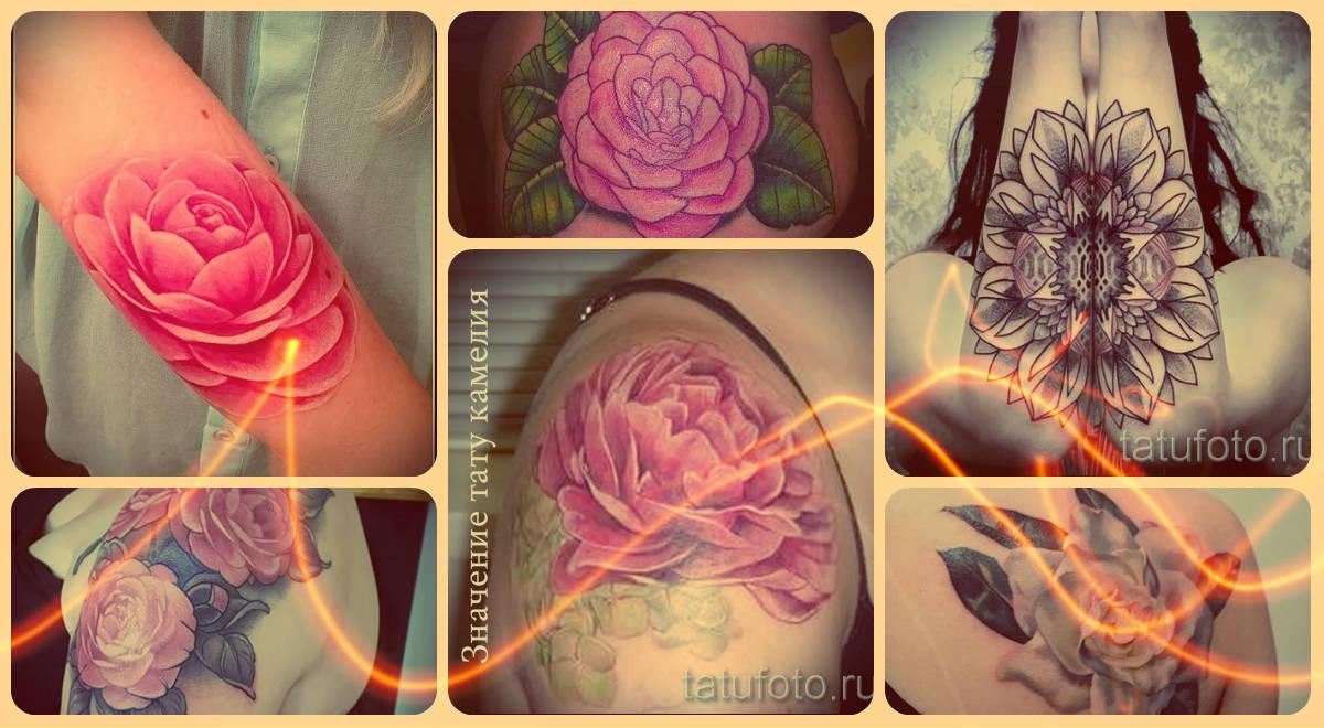 Значение тату камелия - информация о рисунке и фото готовых татуировок