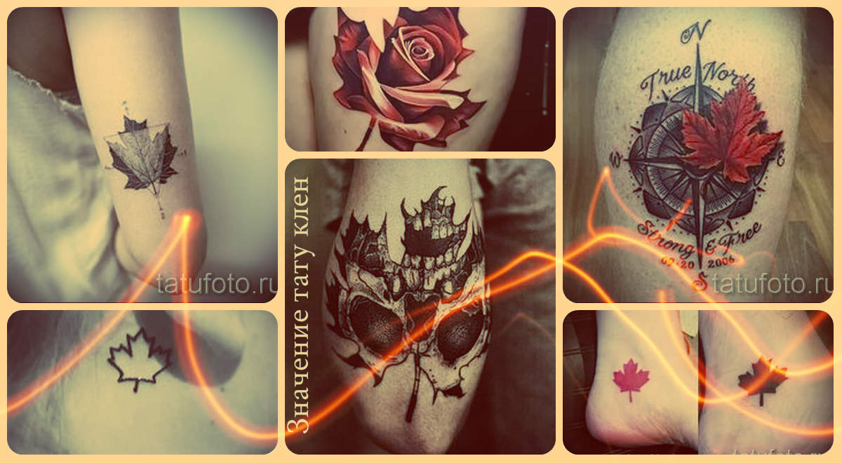 Значение тату клен - информация и фото готовых татуировок с кленом