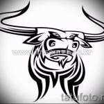 Прикольный эскиз для тату с рисунком тельца – прикольная идея для наколки телец