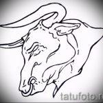 Прикольный эскиз для тату с рисунком тельца – интересная идея для наколки телец