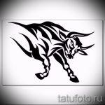 Интересны эскиз для наколки с изображением тельца – интересная идея для татуировки телец