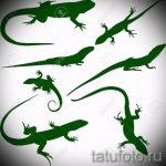 Достойный эскиз для тату саламандра – изображение для формирования задумки особенной татуировки с саламандрой