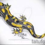 Достойный эскиз для наколки саламандра – картинка для формирования идеи уникальной тату с саламандрой