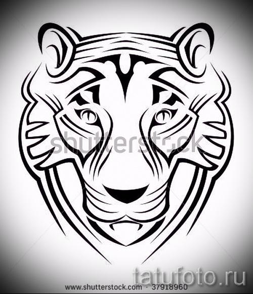 Прикольный эскиз наколки тату тигр (рисунки для татуировки с тигром) - идея рисунка эскизы тату тигр (рисунки для татуировки с тигром) для разработки стильной идеи татуировки тигр