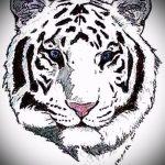 Достойный эскиз тату тату тигр (рисунки для татуировки с тигром) - вариант рисунка эскизы тату тигр (рисунки для татуировки с тигром) для создания эксклюзивной идеи тату тигр