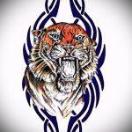 Оригинальный эскиз наколки тату тигр (рисунки для татуировки с тигром) - идея рисунка эскизы тату тигр (рисунки для татуировки с тигром) для разработки интересной идеи тату тигр