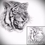 Классный эскиз тату тату тигр (рисунки для татуировки с тигром) - вариант рисунка эскизы тату тигр (рисунки для татуировки с тигром) для разработки уникальной идеи тату тигр