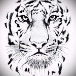 Оригинальный эскиз татуировки тату тигр (рисунки для татуировки с тигром) - вариант рисунка эскизы тату тигр (рисунки для татуировки с тигром) для создания стильной идеи тату тигр