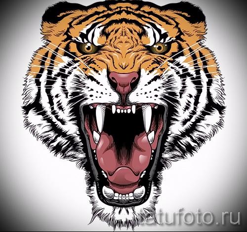 Прикольный эскиз тату тату тигр (рисунки для татуировки с тигром) - идея рисунка эскизы тату тигр (рисунки для татуировки с тигром) для разработки эксклюзивной идеи татуировки тигр