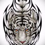 Крутой эскиз тату тату тигр (рисунки для татуировки с тигром) - идея рисунка эскизы тату тигр (рисунки для татуировки с тигром) для разработки интересной идеи тату тигр