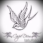 Красивый рисунок ласточки - который отлично подойдет как эскиз для крутой татуировки ласточка
