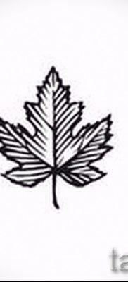 Пример необычного рисунка в уже нанесенной татуировке с кленом для статьи про толкование клена в татуировке