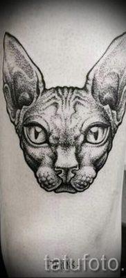 Уникальный вариант татуировки сфинкс – можно использовать для тату сфинкс кошка