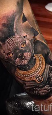 Достойный вариант татуировки сфинкс – можно использовать для тату сфинкс значение для девушек