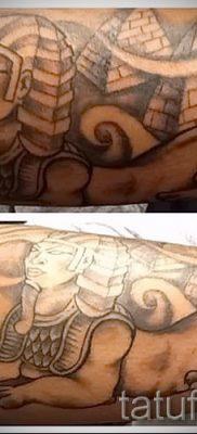 Достойный вариант тату сфинкс – можно использовать для тату египетский сфинкс