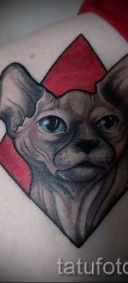 Стильный вариант татуировки сфинкс – можно использовать для тату на плече цветная кошки сфинксы