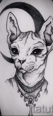 Прикольный вариант татуировки сфинкс – можно использовать для тату сфинкс кошка