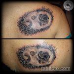 Классный пример нанесенной татуировки ежик – рисунок подойдет для тату ежик на животе