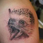 Интересный пример готовой татуировки ежик – рисунок подойдет для тату ежик и цветы
