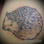 Уникальный вариант нанесенной татуировки ежик – рисунок подойдет для тату ежик на запястье