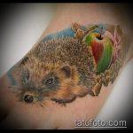 Крутой пример выполненной татуировки ежик – рисунок подойдет для тату ежик резиновый