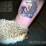Классный вариант выполненной татуировки ежик – рисунок подойдет для тату ежика соника