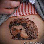 Оригинальный вариант нанесенной татуировки ежик – рисунок подойдет для тату ежика соника