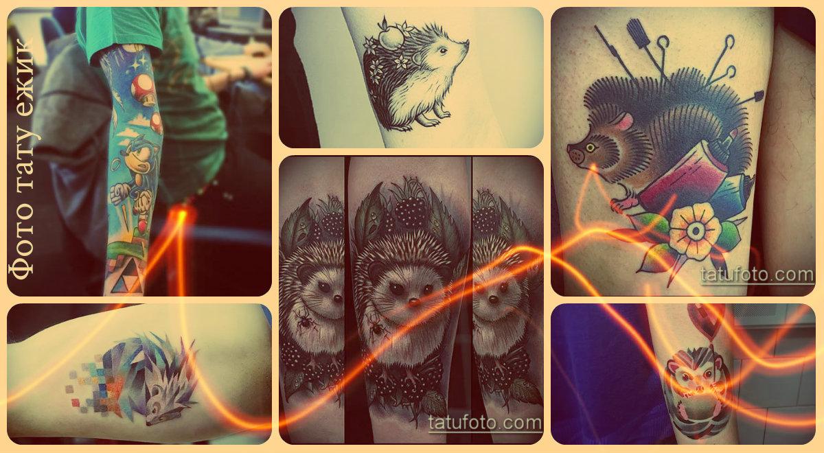 Фото тату ежик - варианты достойных готовых татуировок для выбора рисунка