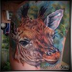 Уникальный пример существующей тату жираф – рисунок подойдет для тату жираф на акуле