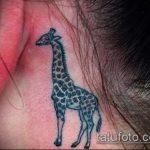 Оригинальный вариант нанесенной татуировки жираф – рисунок подойдет для тату жирафа на спине